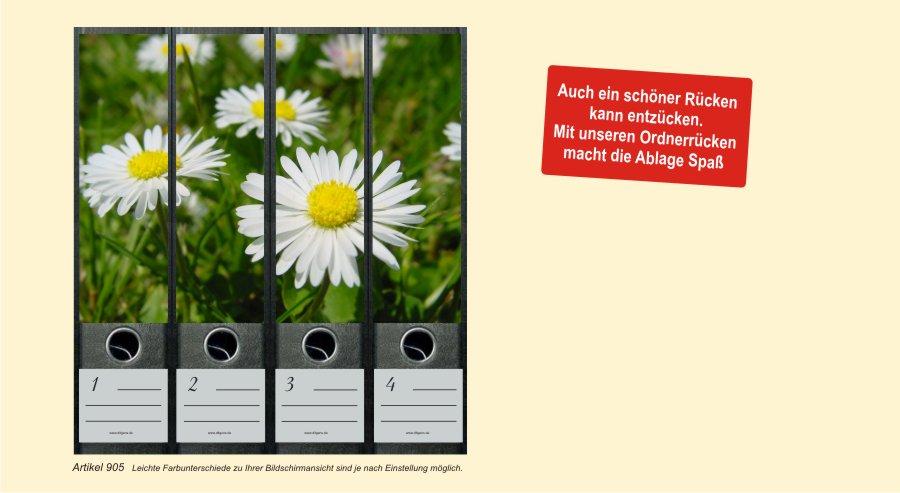 Gänseblümchen Ordnerrücken Ordnerbeschriftung Ordner Ordneretiketten  Nr 905